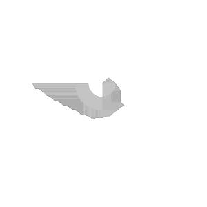 logo hospital oswaldo cruz